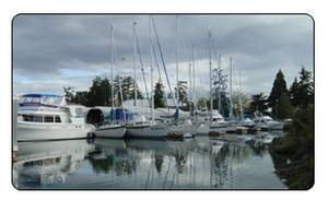 Bayview Yacht Sales image