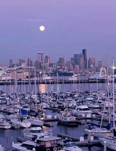 Elliott Bay Yacht Sales image