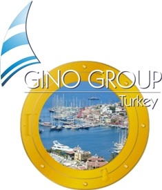 Gino Group image