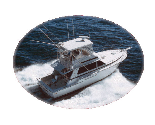 Offshore Marine Services, Ltd. image