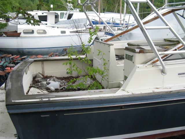 marine survey boat