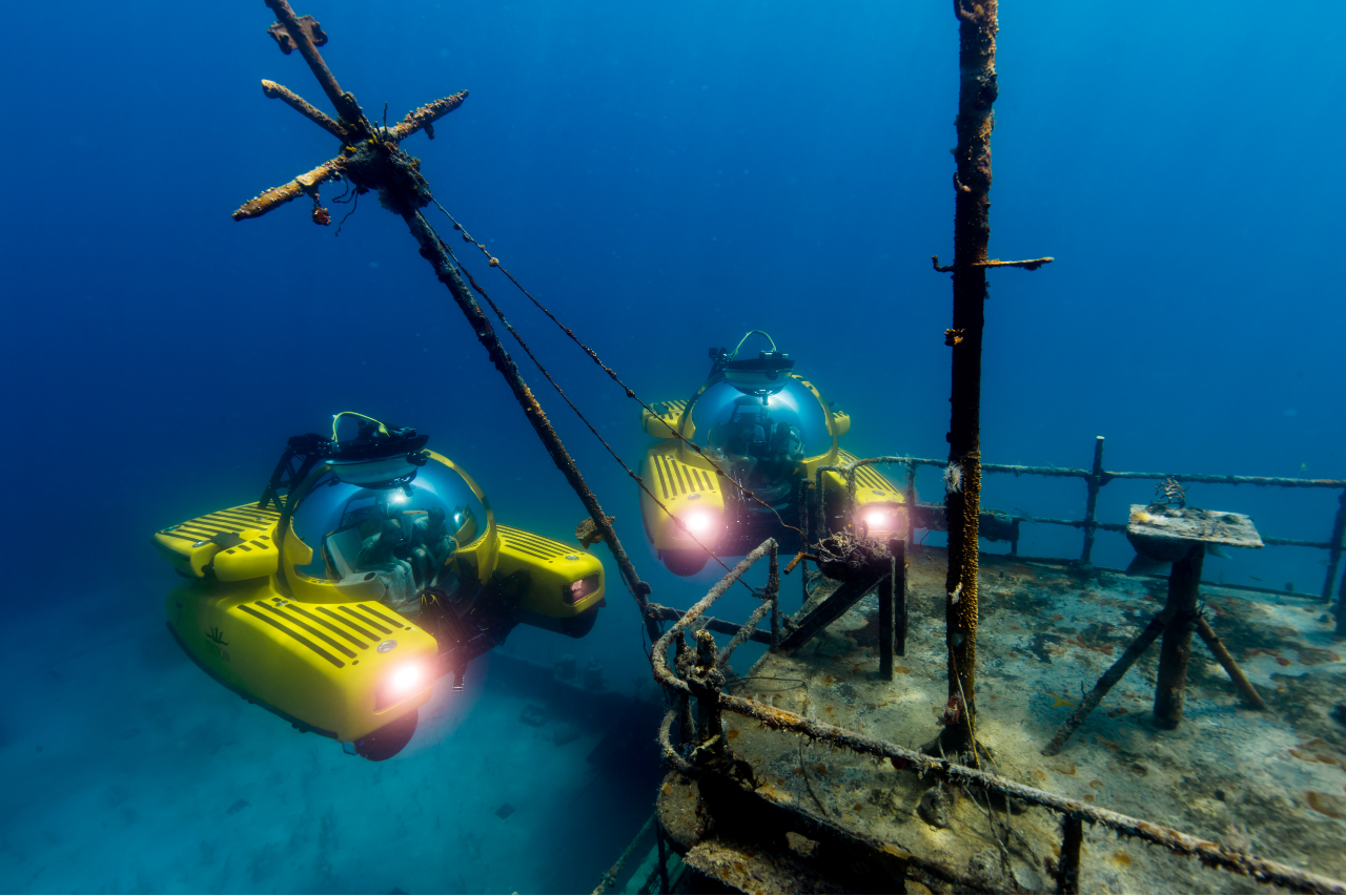 Diving in the Bahamas in a Triton submarine