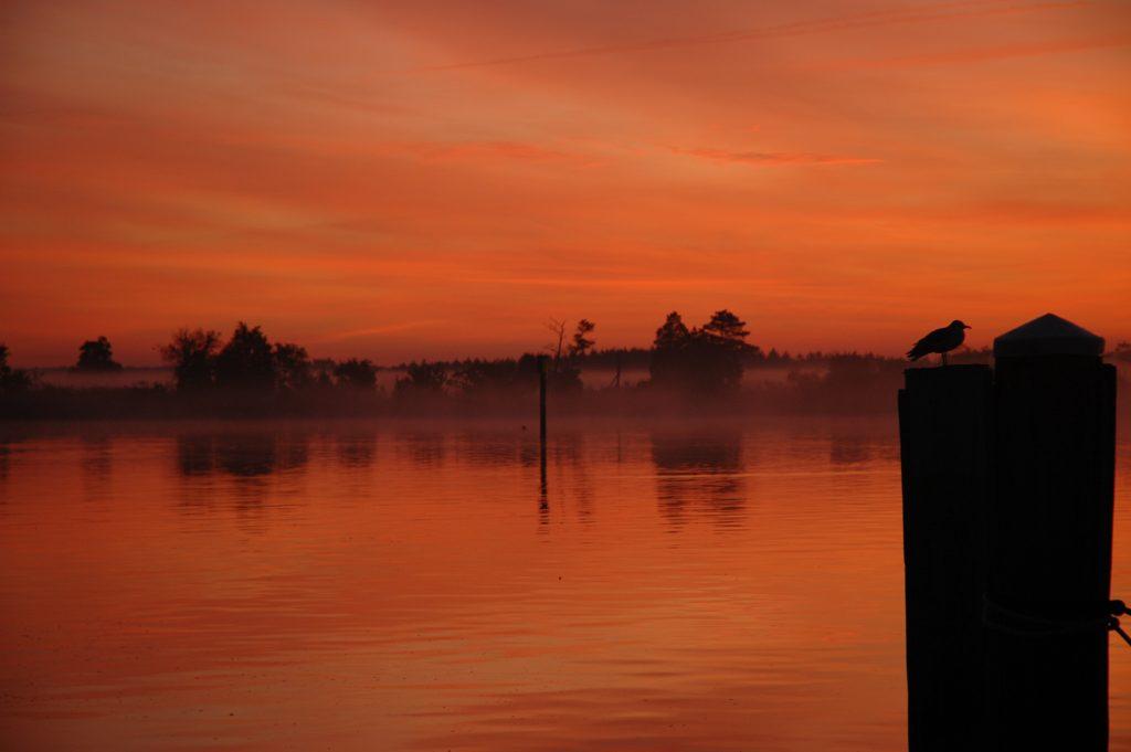 Chesapeake at Dawn