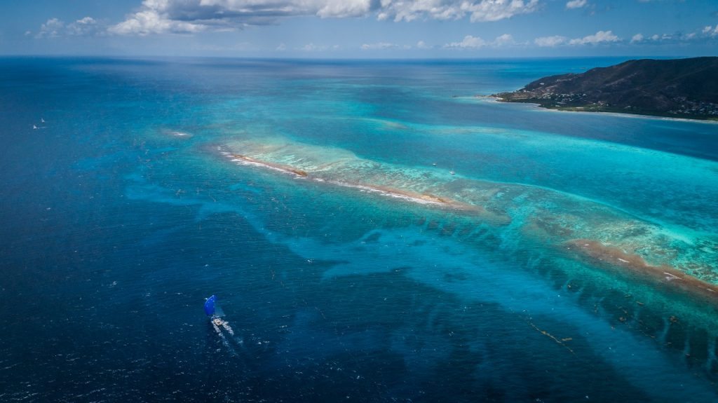 Oyster World-Rally-turquoise-seas
